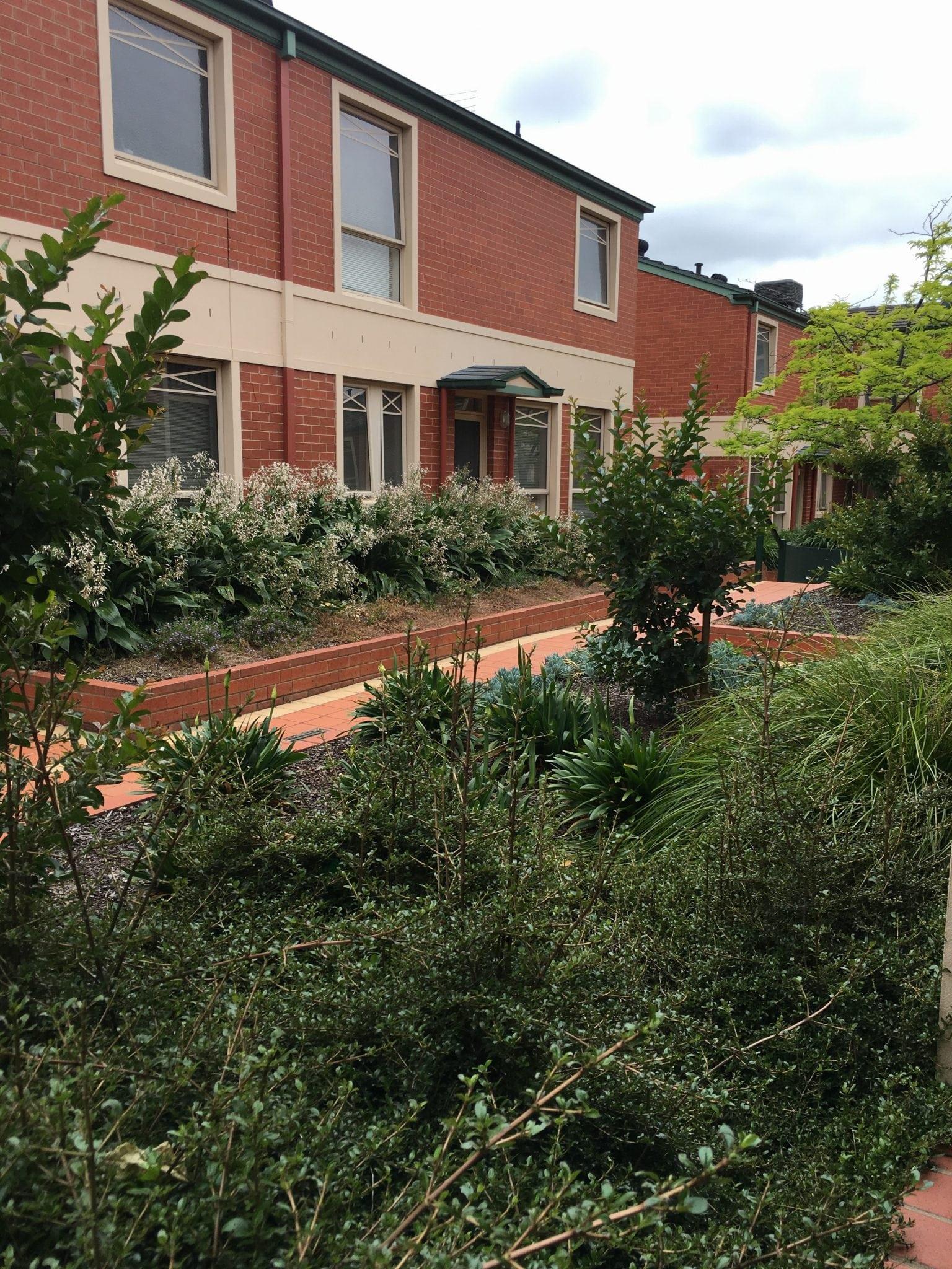 Box Hill 25 at Canterbury Gardens